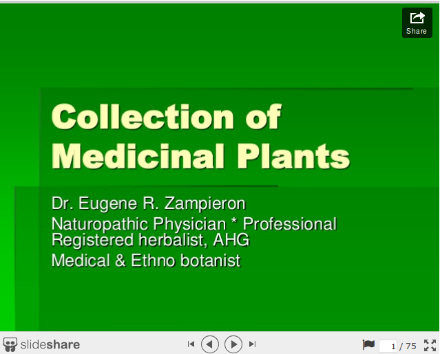 how to collect medicinal herbs presentation
