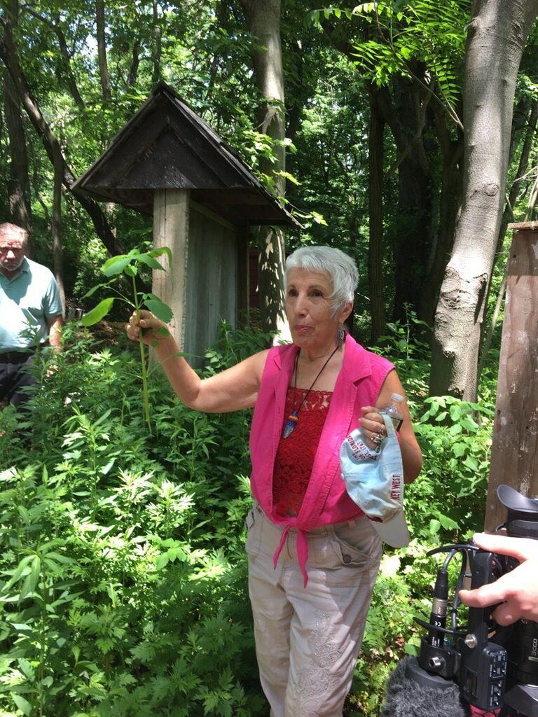 Herb Walk Restoration Farm 2017 4