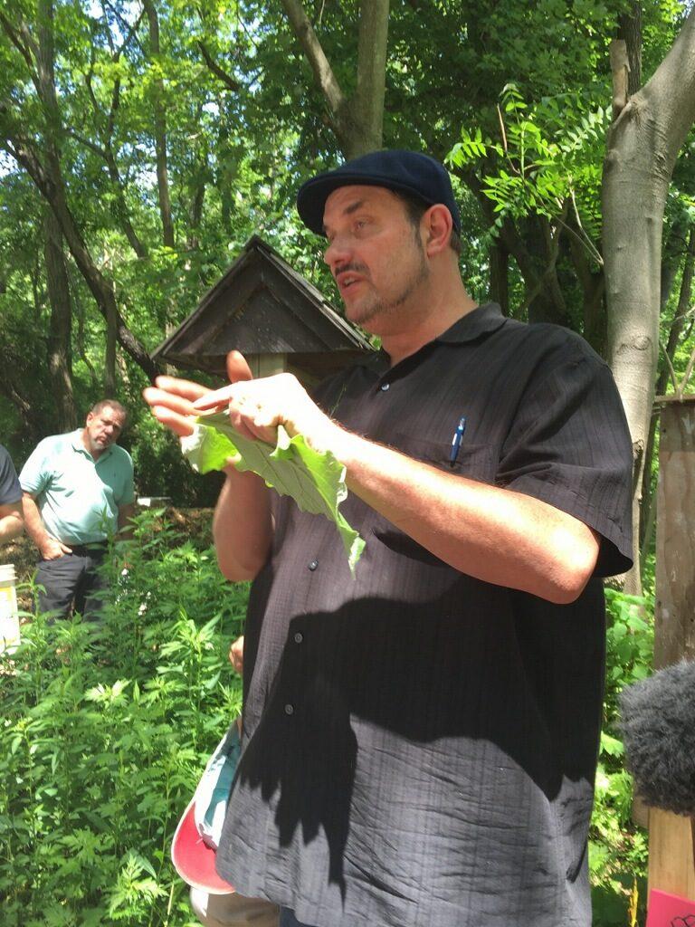 Herb Walk Restoration Farm 2017_1