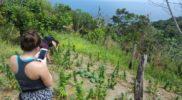 ecotour-for-cures-jamaica-herb-farm