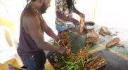 ecotour-herbal-workshop-jamaica-3-bark-roots