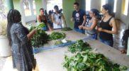 ecotour-herbal-workshop-jamaica-5