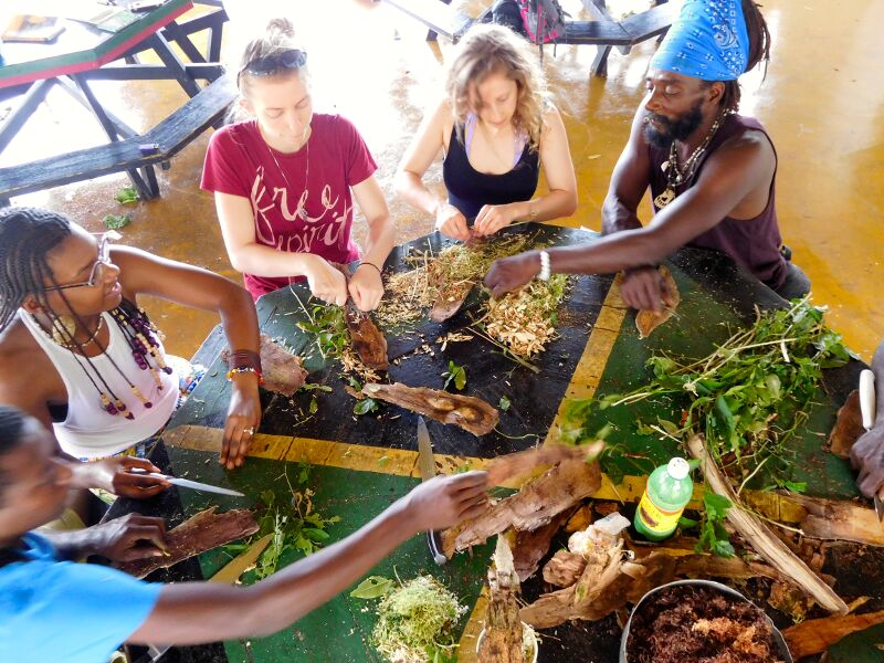 Image result for cultural use of natural healing herbs in caribbean