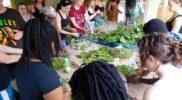 ecotour-herbal-workshop-jamaica-7