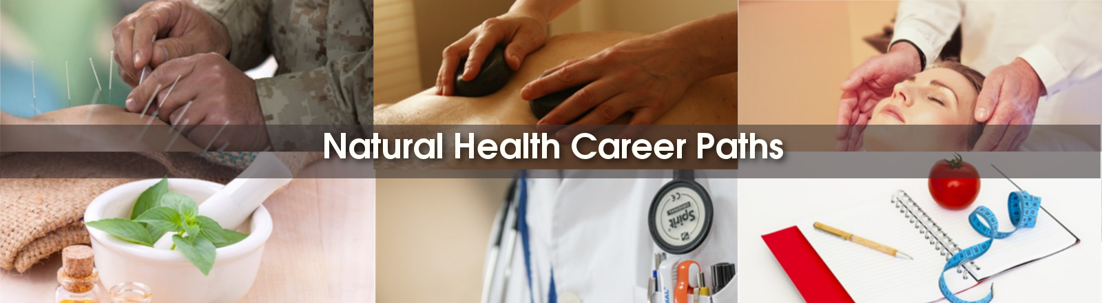 career paths natural medicine