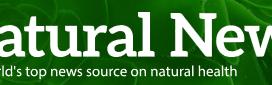 NaturalNews.com_-_2016-06-11_13.59.46