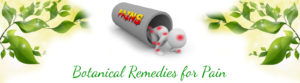 botanical remedies for pain