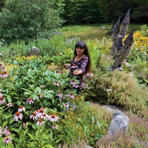 sage mountain herbal field